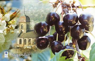 Fougerolles : Fête des cerises